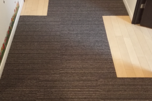 carpet_image